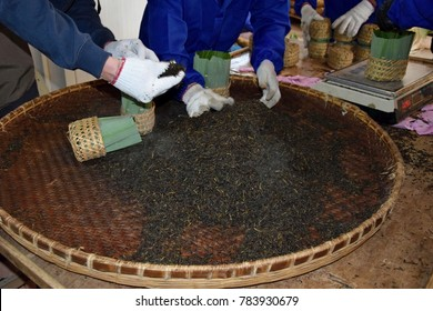 Workers filling wicker baskets with famous chinese black tea Liu An, Anhui province, China.