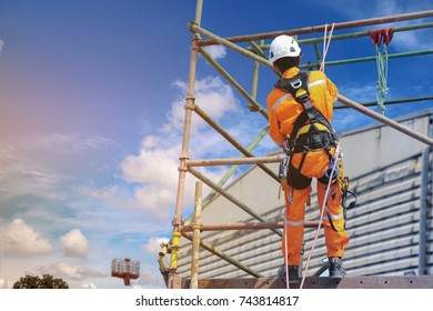 workers up high with safety equipment and safety belts Safety harness on blue sky background