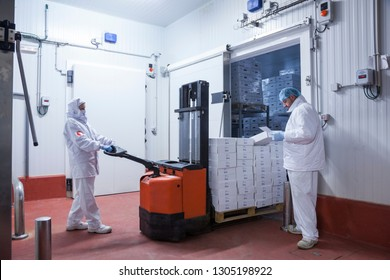 workers with hygienic clothes removing a pallet of boxes from the freezer camera of the meat cutting room
