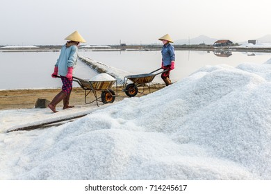 Workers push wheelbarrows at the Hon Khoi salt fields in Nha Trang, Vietnam.
