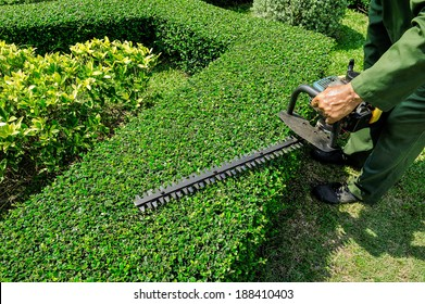 Workers were using electric mower for Gardening.