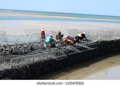 workers working on breakwall at noon. sea disaster prevention. Sea catastrophe.