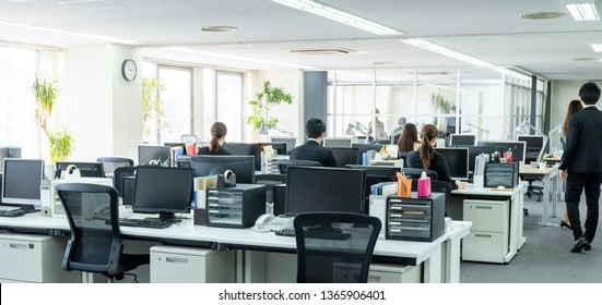 Working businessperson in office.