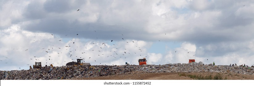 Working day at the landfill of domestic waste and garbage