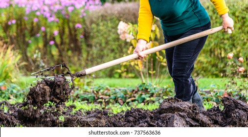 Working farmer in the garden. Organic fertilizer for manuring soil, preparing field for planting in spring, bio farming or autumn gardening concept