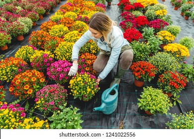 Working in flower field