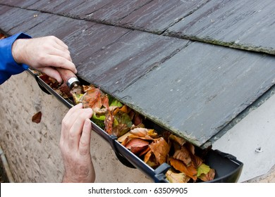 Working Hands Workman Clearing Autumn Leaves from Gutter