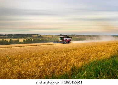 Working harvesting combine in the field of wheat.