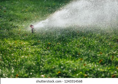 working lawn sprinkler spraying water over green grass