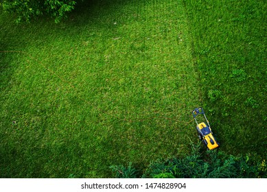 Working men working lawn care