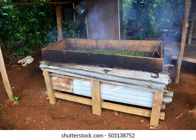 Working process steaming dried or pan firing tea leaves at Bolaven Plateau in Paksong, Champasak, Laos