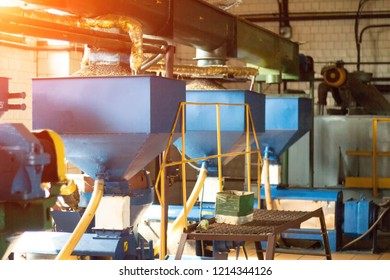 Workshop for the production and processing of oilseed rape, biofuel production, production of rapeseed oil, a working workshop with equipment, fuel, biodiesel