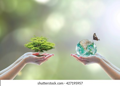 World biodiversity for sustainable ecological environment, and harmony living with nature concept. Element of this image furnished by NASA