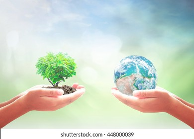 World charity day concept: Two children hands holding earth globe and heart shape of tree over blurred nature background. Elements of this image furnished by NASA