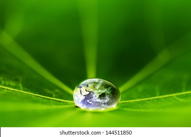 The world in a drop of water on a leaf. Elements of this image furnished by NASA
