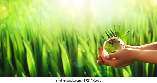World Earth Day Banner. Hands  holding glass green planet on sunny background. Save Nature.  Concept of the Environment