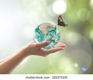 World environment day concept with green planet in clean biological nature in volunteer's hand support. Element of  image furnished by NASA