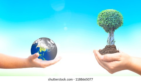 World Environment Day concept: holding polluted earth and green trees on blue nature background