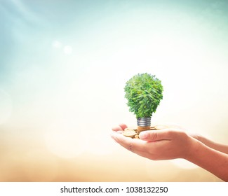 World environment day concept: Human hands holding light bulb of tree on golden coins over blurred nature background