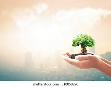 World environment day concept: Human hands holding big tree on blurred big city with world map of clouds background