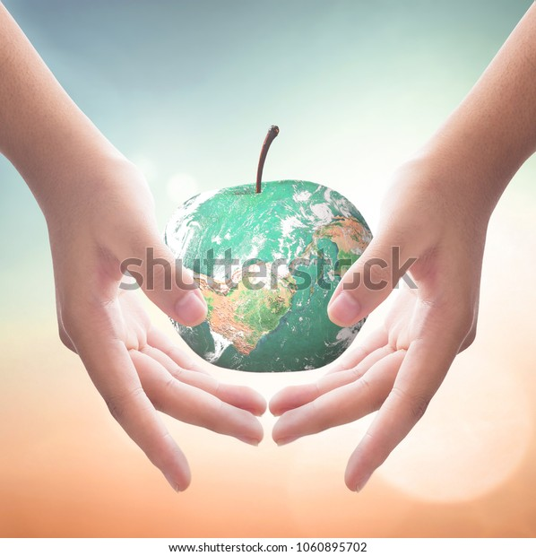 World environment day concept: Human hands holding apple fruit of earth globe on blurred nature background. Elements of this image furnished by NASA