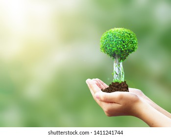 World Environment Day concept: protect the Earth