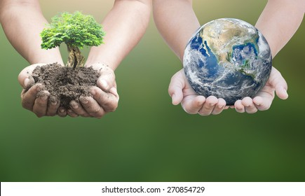 World environment day concept. Two human hands holding earth globe and big tree over blurred nature background. Elements of this image furnished by NASA