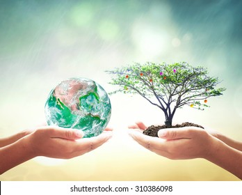 World environment day concept: Two framing hands holding earth globe and fruitful tree over abstract nature background. Elements of this image furnished by NASA
