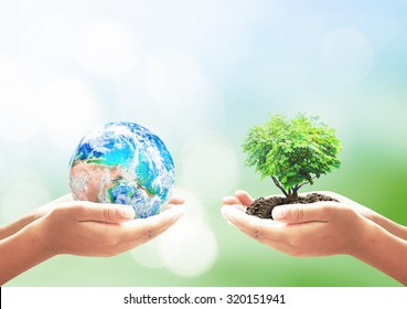 World environment day concept: Two human hands holding earth globe and heart shape of tree over blurred nature background. Elements of this image furnished by NASA