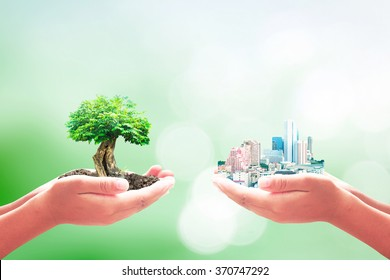 World environment day concept: Two human hands holding big tree and city over blur green nature background