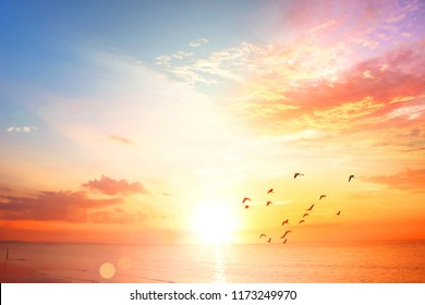 World Environment Day concept:Sunset / sunrise with clouds