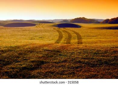 World famous carnoustie golf course - tracks