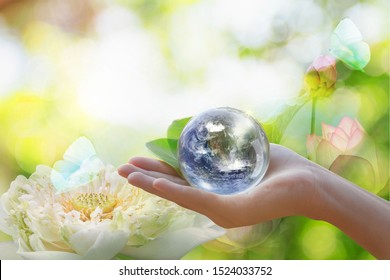 World in Hand and Blurred Beautiful Bokeh in the Garden Background . World environment day concept with tree planting and green earth on volunteering hands. Element of the image furnished by NASA