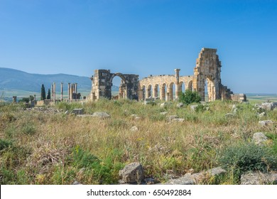 The world heritage site in 1997, Volubilis ruins, The archaeological site Volubilis, Historical place of ancient mauritania capital. The important outpost of Roman empire