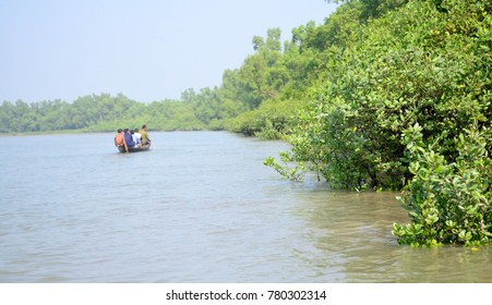 World Largest Mangrove forest in Bangladesh nearby a beautiful river.