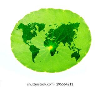 world map inside a leaf, illustration design on white.