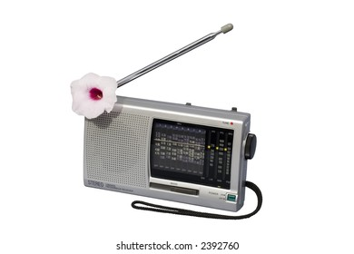 World Radio with Flower; isolated, clipping path included