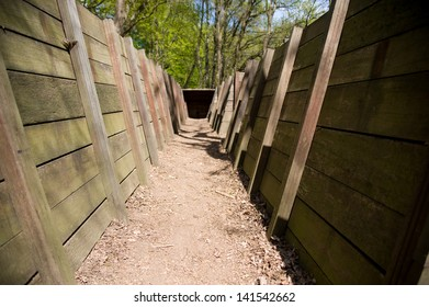 World War 2 trench in a forest