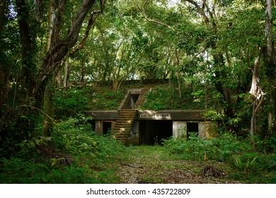 A world war II abandoned battery near the Panama Canal. The jungle advances over the ruins.