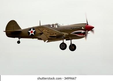A World War Two P-40 airplane landing at an air show.