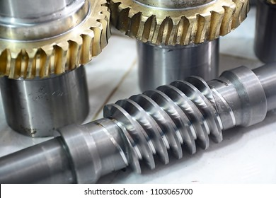 worm gear or worm drive tramsission