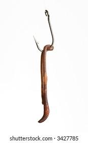 Worm of Hook