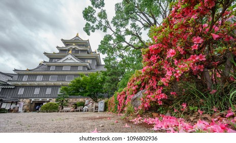 Worms eye view of Okayama castle against stormy clouds in Japan with flowers in the garden