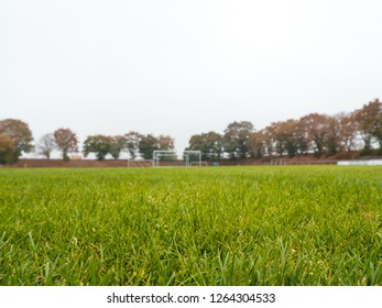 worms eye view of Rural soccer pitch in Germany, focus on grass