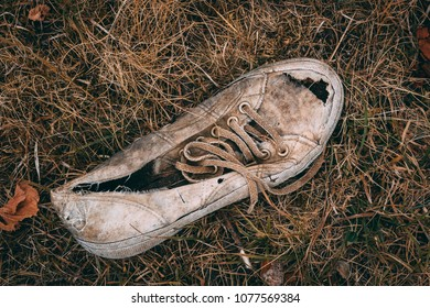 Worn and dirty sneaker on dry grass