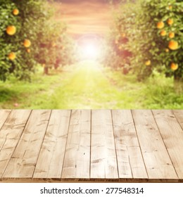 worn old table place and orange trees and sunset time