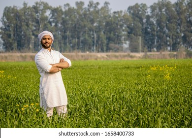 worry less indian farmer standing hand folded in his healthy wheat field