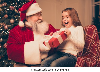 wow dream is real in christmastime! happy little cute girl sitting on the lap of aged Santa Claus. He giving red  box with bow of ribbon for she at home near christmas tree