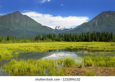 Wrangell Mountains from McCarthy Road. The Wrangell Mountains are a high mountain range of eastern Alaska in the United States, UNESCO World Heritage Site