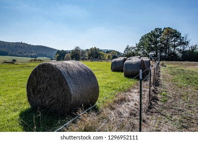 Wrapped round hay bales at the edge of a field near a barbed wire fence in rural Appalachia.